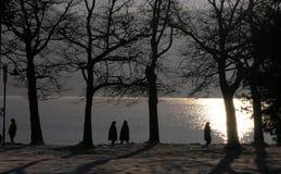 Winterweg durch den See Lizenzfreies Stockfoto
