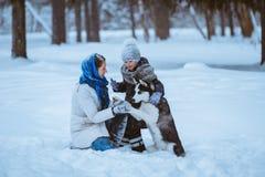 Winterweg mit Schlittenhund stockbild
