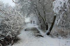 Winterweg mit Wanderern Stockbilder