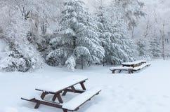 Winterweißschnee Weihnachtshintergrund mit schneebedeckten Tannenbäumen korea Lizenzfreie Stockbilder