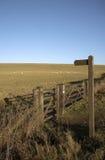 Winterweide auf Wiltshire-Ackerland Großbritannien Stockfoto