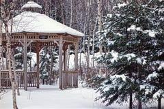 Winterwelt Lizenzfreies Stockbild