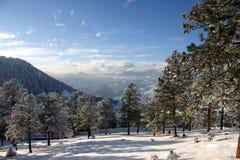 Winterwonderland Stock Images