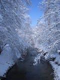 Winterwonderland Foto de Stock