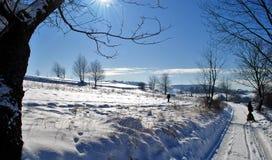 winterwonderland Royaltyfria Foton