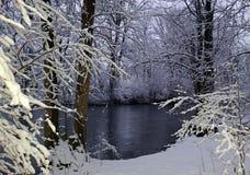 winterwonderland Royaltyfria Bilder