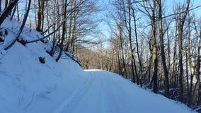 Winterwonderland Photo libre de droits