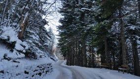 Winterwonderland Photos stock