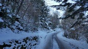 Winterwonderland Photographie stock libre de droits