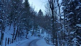 Winterwonderland Image stock