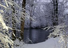 Winterwonderland Royalty Free Stock Images