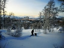 Winterwonderland. The first snow has fallen Stock Image