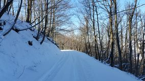 Winterwonderland. Snow covered road in the forest Royalty Free Stock Photo