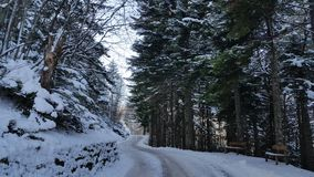 Winterwonderland. Snow covered road in the forest Stock Photos