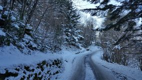 Winterwonderland. Snow covered road in the forest Royalty Free Stock Photography