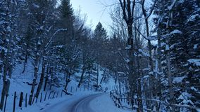 Winterwonderland. Snow covered road in the forest Stock Image