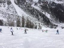 Winterwonderland. Snow and skiing Stock Image