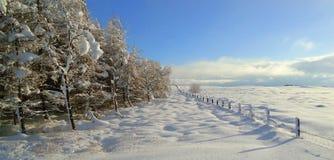 Winterwunder Lizenzfreies Stockbild