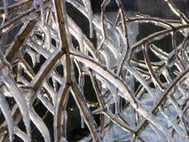 Winterwunder Stockbilder