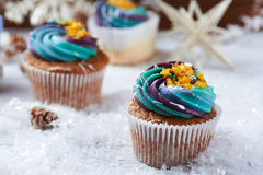 Wintery cupcakes on a snow background Stock Photography