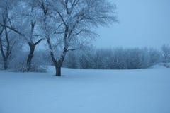 Wintery Farmscape Stock Image