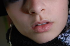 Wintery Lips Stock Images