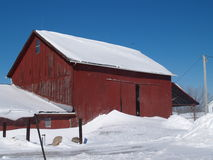 Wintery Red Barn. Old red barn surrounded by snow and a brilliant blue sky Royalty Free Stock Photography