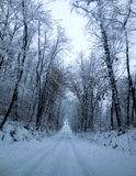Wintery road Royalty Free Stock Photo