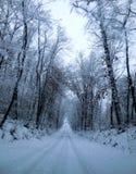 Wintery road Royalty Free Stock Photo