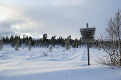 Wintery Signpost. Wooden signpost in a winter landscape with animal tracks in the snow Royalty Free Stock Photography