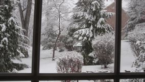 Wintery Snow Fall stock video