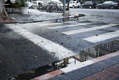 Crosswalk Puddle Stock Images