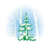 Wintery vector illustration with fir-tree Stock Image