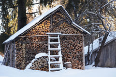 Wintery woodpile Royalty Free Stock Photo