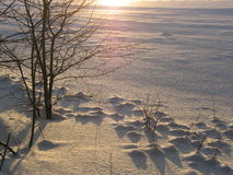 Winterzeit Lizenzfreie Stockbilder