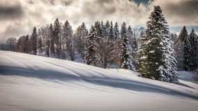 Winterzeit stockfotografie