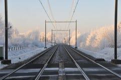 Winterzeit. lizenzfreies stockbild
