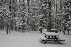 Winterzeit in Litauen Stockfoto