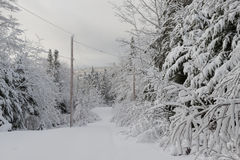 Winterzeit in Nova Scotia Lizenzfreies Stockfoto