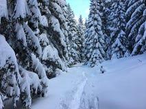Winterzeit in Terchova, Weise zum 'VeÄ-¾ kà ½ Rozsutec ' stockfotos