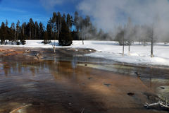 Winterzeitbild in Yellowstone Nationalpark Stockfotos