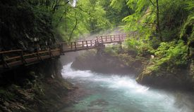 Wintgar gorge near Bled in Julian Alps Stock Images