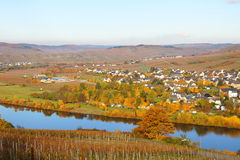 Wintrich on the Moselle. Wine village Wintrich on the Moselle in autumn Stock Photos