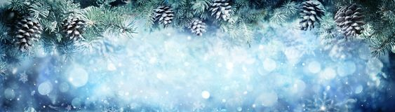 Wintry Banner - Snowy Fir Branches. With Snowfall Royalty Free Stock Photo