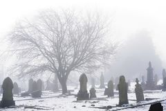 Wintry Cemetery In Shrouded in Fog Stock Photography