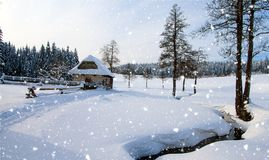 Wintry country with cottage, snowfall. Wood and flat country snow covered Royalty Free Stock Photo