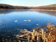 wintry lake Royaltyfri Fotografi