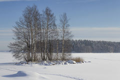 Wintry lake. Little island in the middle wintry lake in Finland stock photo