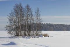 Wintry lake Stock Photo