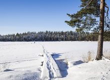 Wintry lakescape from Finland Royalty Free Stock Image